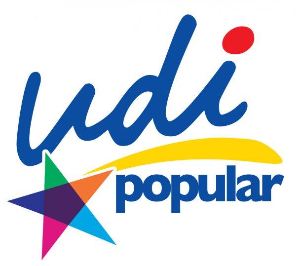 udi-logo-7127921.jpeg
