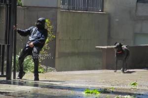 """El Negro Protegiendo la retaguardia de un Compañero carepolera mientras les hace un hermoso """"Te Paseo"""" a los Pacos"""