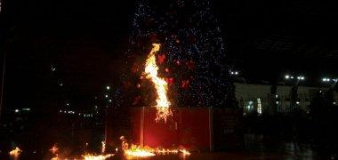 arbol quemado jijiji