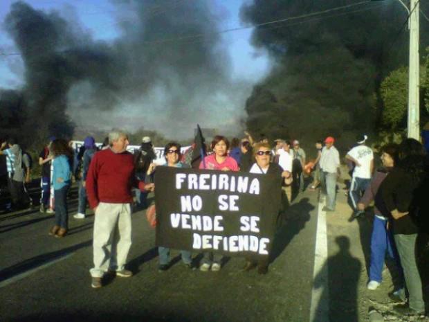 freirina-guanacos-agrosuper2