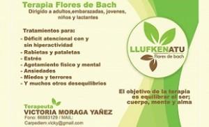 "Terapia Flores De Bach ""Llufken Atu"""