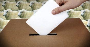 democracia-voto-1q