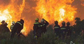 incendio pumanque