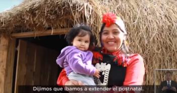 piñera mapuche