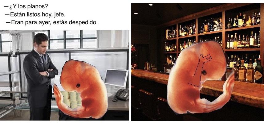 feto culiao 4