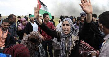 palestinos 4