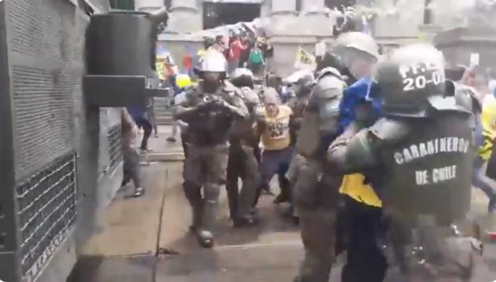 pacos de mierda perros de las afp