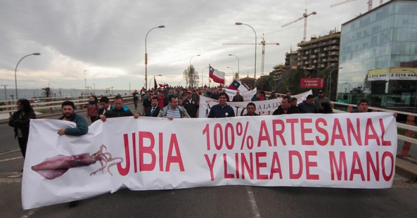 jibia 1
