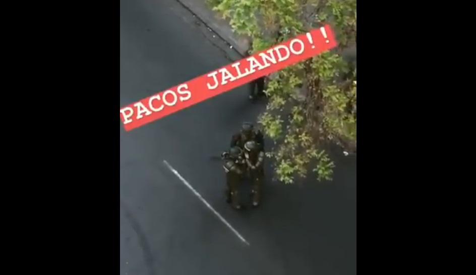 pacos jalando 6