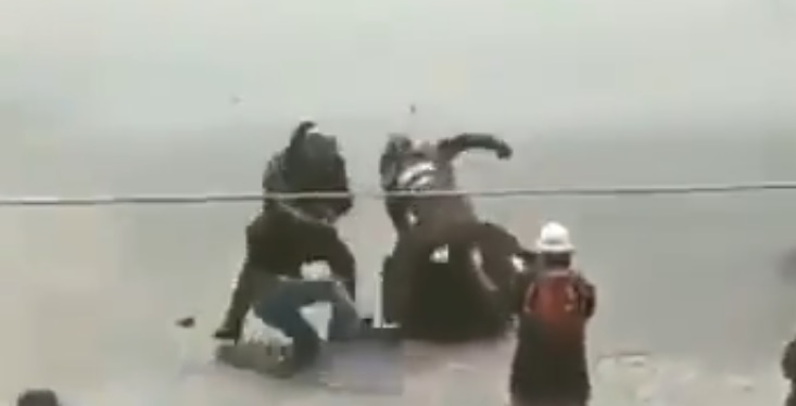 pacos de mierda van a morir 2